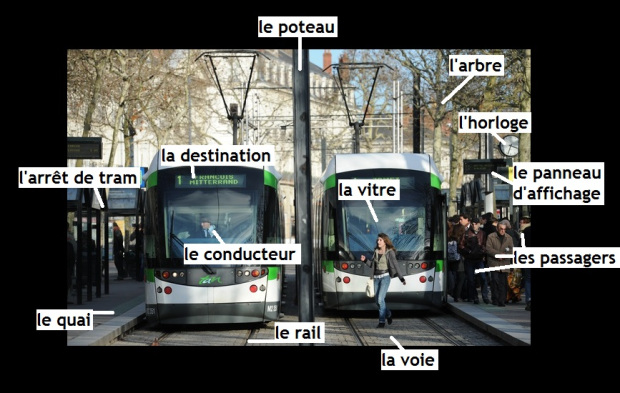Vocabulaire tramway